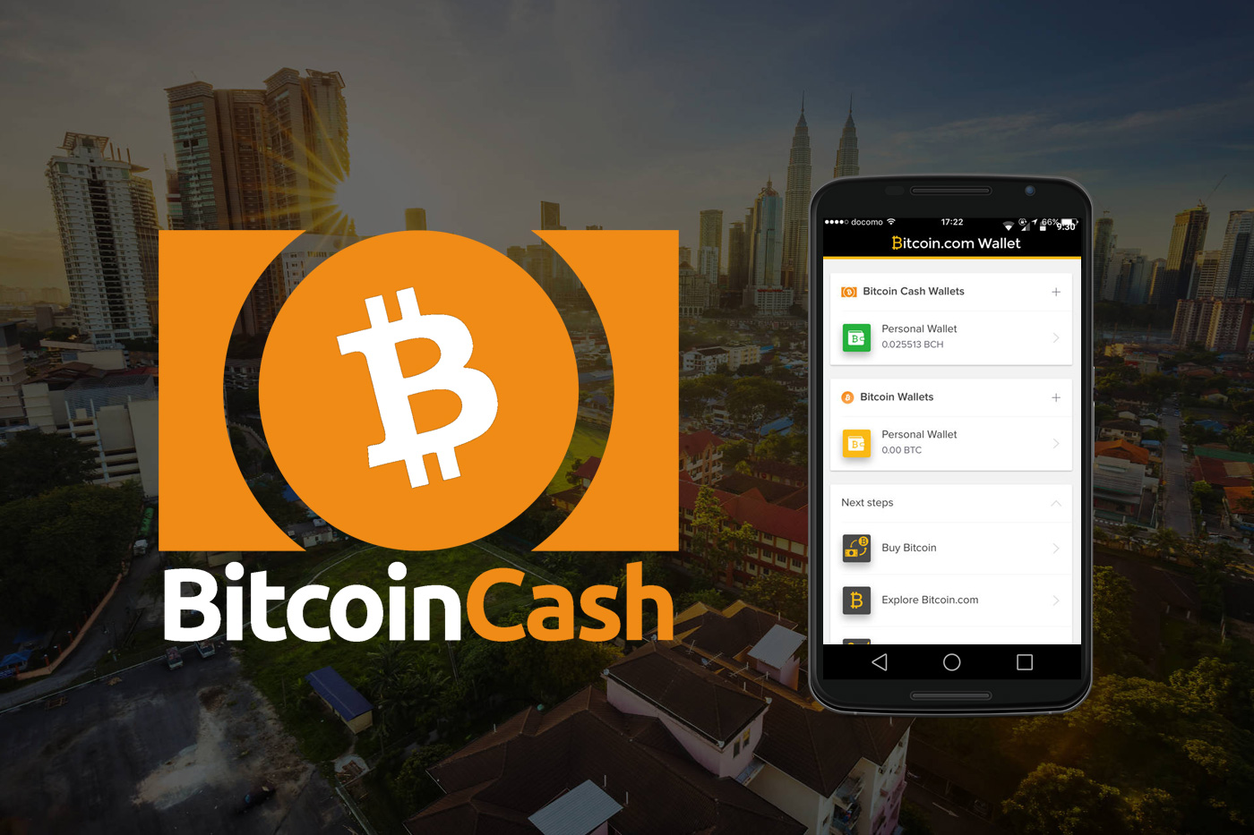 Bitcoin Cash Guide